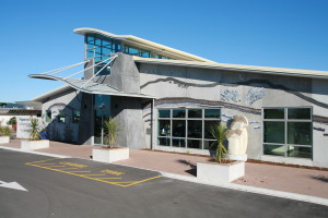 Papamoa Library
